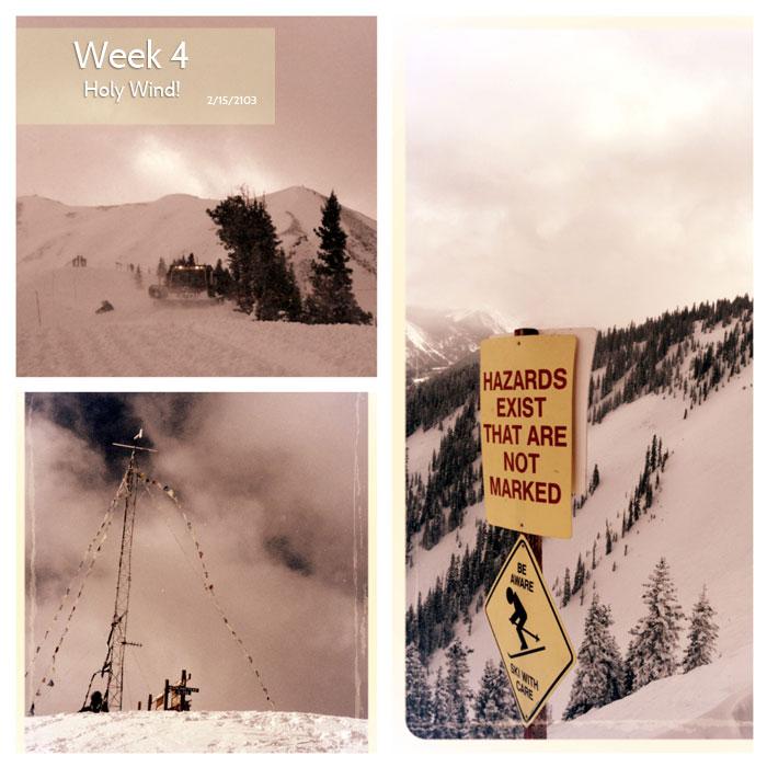 bowl-week4