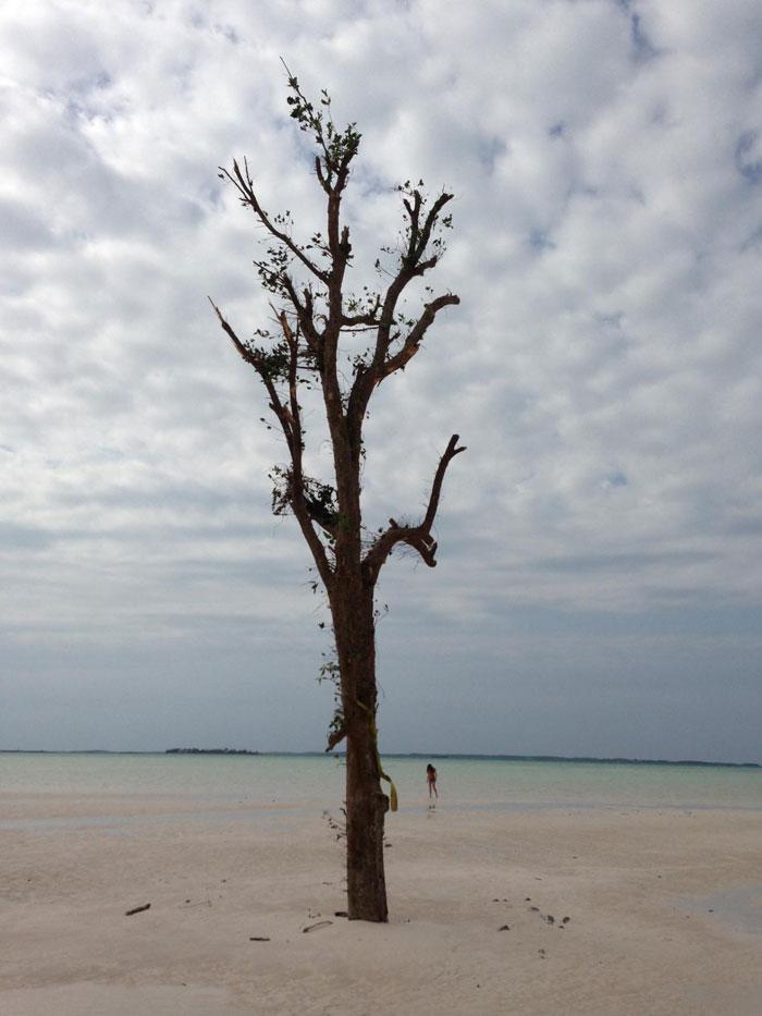 Harbor Island Bahamas